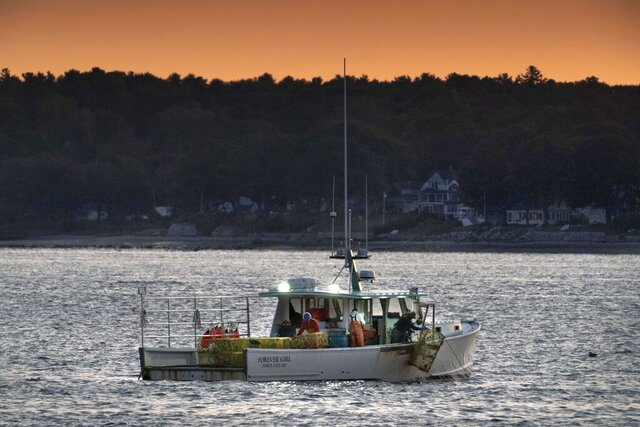 The crew on a lobster boat hauls traps at sunrise, Monday, Sept. 21, 2020, off Portland, Maine. The state's lobster fishermen braced for a difficult summer this year due to the coronavirus pandemic, but the season was unexpectedly decent. (AP Photo/Robert F. Bukaty)