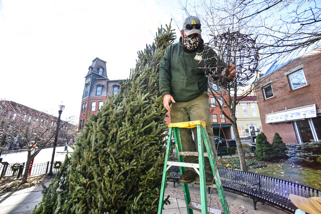 Jacob Rice, a worker from the Retreat Farm, helps with the Christmas tree in Pliny Park, in Brattleboro, Vt., on Tuesday, Nov. 24, 2020, for the holiday season. (Kristopher Radder/The Brattleboro Reformer via AP)
