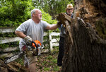 In this April 17, 2019, photo, Larry Elmore uses a chainsaw to cut into a fallen tree stump and examine the wood with Dr. Sam Barnes at his home in Cookeville, Tenn. Elmore first began taking opioids for legitimate pain from working in the mines. He did not know it was addictive at first until he was using the pills for everything. (Courtney Pedroza/The Tennessean via AP)
