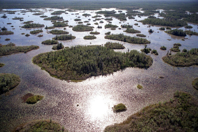 FILE-In this Thursday, April 3, 1997 file photo, the Okefenokee National Wildlife Refuge in southeast Ga., is is seen. A mining company said Tuesday it plans to dig for minerals without a federal permit at the edge of the vast wildlife refuge in the Okefenokee Swamp, a big step for a once-embattled project that's now benefitting from the Trump administration's rollback of environmental rules. (Stuart Tannehill/Florida Times-Union via AP, File)