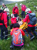 Volunteers from Wasdale mountain rescue team take turns to carry 121lb (55kg) St Bernard dog, Daisy from England's highest peak, Scafell Pike, Sunday July 26, 2020. The mountain rescue team spent nearly five hours rescuing St Bernard dog Daisy, who had collapsed displaying signs of pain in her rear legs and was refusing to move, while descending Scafell Pike. The Wasdale Mountain Rescue team rely on public contributions to their JustGiving.com/wasdalemrt page to fund their mountain safety efforts. (Wasdale Mountain Rescue via AP)
