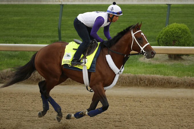 Kentucky Derby entrant Maximum Security is ridden during a workout at Churchill Downs Wednesday, May 1, 2019, in Louisville, Ky. The 145th running of the Kentucky Derby is scheduled for Saturday, May 4. (AP Photo/Charlie Riedel)