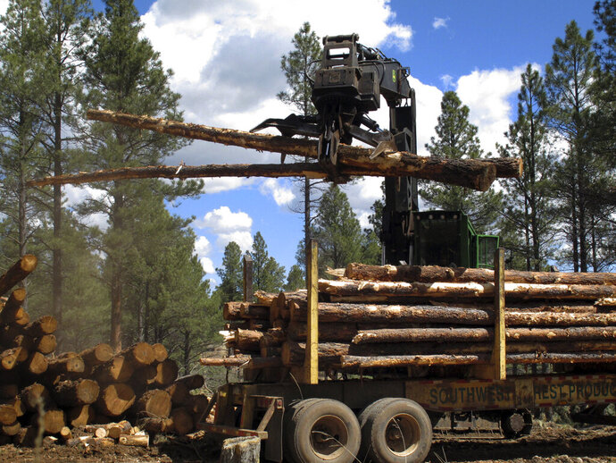 FILE - In this April 28, 2015, file photo, a machine stacks logs in the Coconino National Forest just outside Flagstaff, Ariz. The U.S. Forest Service is seeking proposals to remove dense stands of trees in a wide swath of Arizona to help prevent wildfires. The agency is hoping to accelerate the pace of the work that's part of the Four Forest Restoration Initiative. It released a request for proposals Monday, Sept. 16, 2019, for parts of the Kaibab, Apache-Sitgreaves, Tonto and Coconino national forests. (AP Photo/Felicia Fonseca, File)
