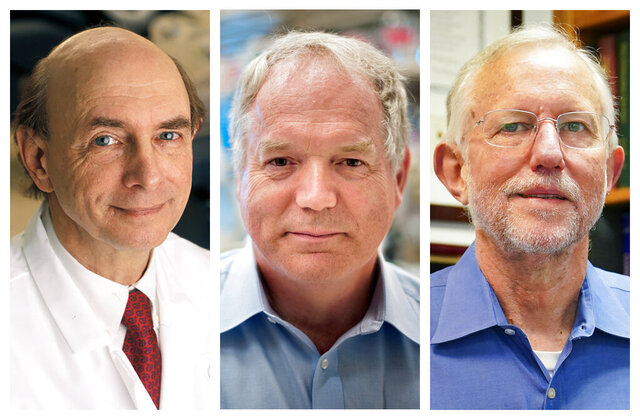 This combination of photos shows, from left, Harvey J. Alter, Charles M. Rice, and Michael Houghton who jointly won the Nobel Prize for medicine on Monday, Oct. 5, 2020, for their discovery of the hepatitis C virus. The major source of liver disease affects millions worldwide. (Rhoda Baer/National Institutes of Health, Richard Siemens/University of Alberta, AP Photo/John Minchillo)