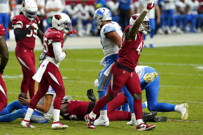 Arizona Cardinals outside linebacker Haason Reddick celebrates his sack against th Detroit Lions during the second half of an NFL football game, Sunday, Sept. 27, 2020, in Glendale, Ariz. (AP Photo/Ross D. Franklin)