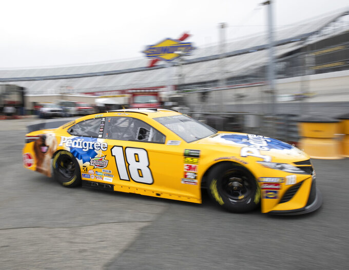 Kyle Busch heads out to the track during practice for the NASCAR Cup Series auto race, Saturday, May 4, 2019, at Dover International Speedway in Dover, Del. (AP Photo/Jason Minto)