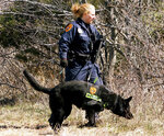 """FILE - In this March 29, 2011, file photo, a Suffolk County Police Department officer and dog search the Gilgo Beach area on New York's Long Island for human remains. Authorities investigating the long-running mystery of skeletal remains strewn along a suburban New York beach highway said Friday, May 22, 2020m, they have identified the remains of one of the women using DNA technology. Suffolk County police said they would soon post information about the woman, known as """"Jane Doe No. 6,"""