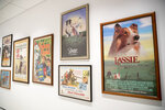 This Wednesday, Jan. 9, 2019, photo shows a wall of movie posters celebrating canine stars on display at the American Kennel Club Museum of the Dog in New York. The museum opens Feb. 8, returning to New York after three decades on the outskirts of St. Louis. (AP Photo/Mary Altaffer)
