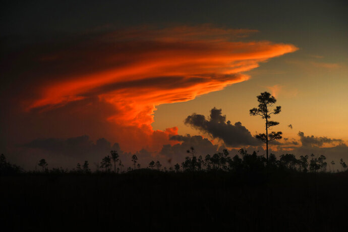 "In this Tuesday, Oct. 22, 2019 photo, the first rays of sunlight color clouds over Everglades National Park, near Flamingo, Fla. The park receives nearly 60 inches of rain annually. ""Here are no lofty peaks seeking the sky, no mighty glaciers or rushing streams wearing away the uplifted land,"" President Harry S. Truman said in a Dec. 6, 1947, address dedicating the Everglades National Park. ""Here is land, tranquil in its quiet beauty, serving not as the source of water, but as the last receiver of it. To its natural abundance we owe the spectacular plant and animal life that distinguishes this place from all others in our country."