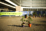 Plants are placed on the ground during a small protest by Extinction Rebellion climate change activists outside the European Commission headquarters in Brussels, Thursday, Oct. 31, 2019. Plants were set to be picked up or given to each new incoming European Union Commissioners. (AP Photo/Francisco Seco)