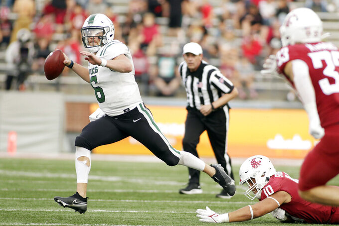 Portland State quarterback Davis Alexander (6) looks for a receiver after evading Washington State defensive end Ron Stone Jr. (10) during the second half of an NCAA college football game, Saturday, Sept. 11, 2021, in Pullman, Wash. Washington State won 44-24. (AP Photo/Young Kwak)