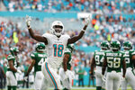 Miami Dolphins wide receiver Preston Williams (18) celebrates after his team scored a touchdown against the New York Jets during the first half of an NFL football game, Sunday, Nov. 3, 2019, in Miami Gardens, Fla. (AP Photo/Wilfredo Lee)