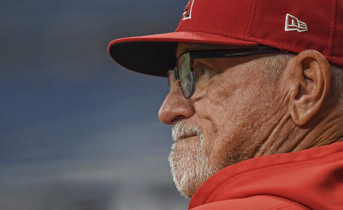 """FILE - In this June 25, 2021, file photo, Los Angeles Angels manager Joe Maddon watches his team warm up before a baseball game against the Tampa Bay Rays in St. Petersburg, Fla. Joe Maddon is a big believer in the importance of rest. So much so that each year his clubs go through """"American Legion Week"""" - basically show up, lace up the cleats and take the field.(AP Photo/Steve Nesius, File)"""