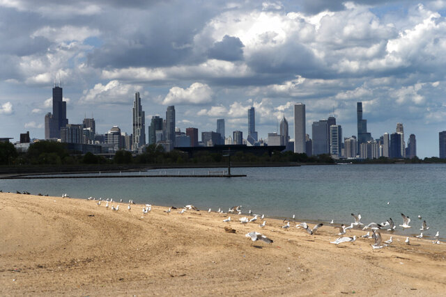 Gulls occupy the 31st Street Beach in Chicago on Monday, May 25, 2020, where on a typical Memorial Day thousands of people would flock. The city's lakefront continues to be closed as some COVID-19 restrictions are relaxed. (AP Photo/Charles Rex Arbogast)