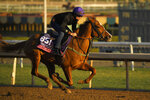 Albigna, entered in the the Juvenile Fillies Turf horse race, works out on the track at Santa Anita Park for the Breeders' Cup, Thursday, Oct. 31, 2019, in Arcadia, Calif. (AP Photo/Mark J. Terrill)