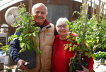 Gus Picardo and his wife Mary Picardo pose for a photo in their backyard greenhouse, March 19, 2021, in Millcreek Township, Pa. The couple raises a variety of vegetables and flowers. The couple got a head start on their garden when they stayed home because of the COVID-19 pandemic. (Jack Hanrahan/Erie Times-News via AP)