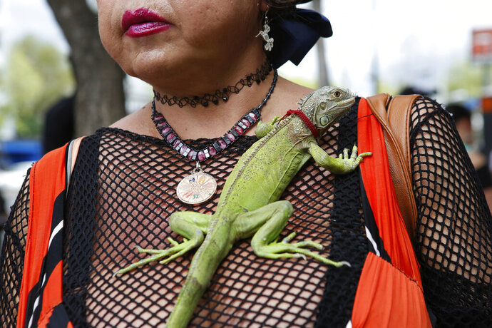 Karla Esperanza, a transgender sex worker, poses for a photo with her iguana named