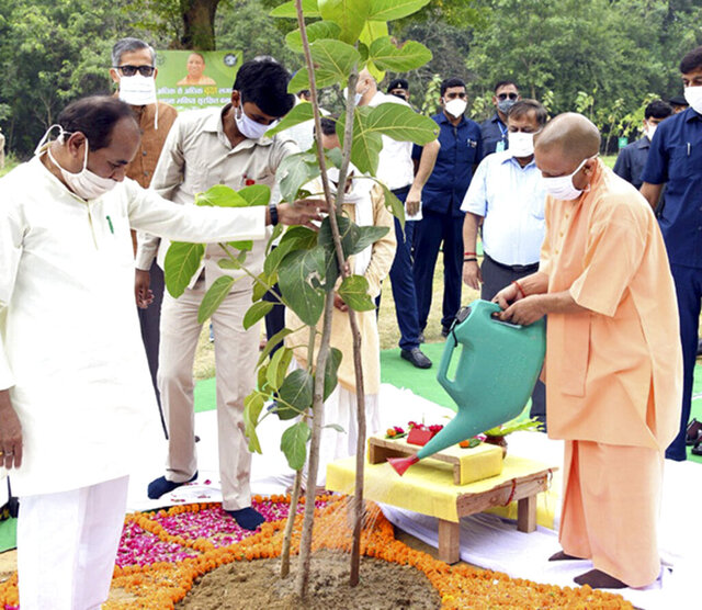 In this photo released by India's Uttar Pradesh state government, Uttar Pradesh Chief Minister, Yogi Adityanath, right, inaugurates a day long tree planting campaign across the state in Lucknow, India, Sunday, July 5, 2020. (Uttar Pradesh state government via AP)