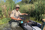 In this photo taken Sept. 12, 2019, Greg Gerstenberg, a senior wildlife biologist with the California Department of Fish and Wildlife, shows a muskrat in a trap intended to catch nutria as he prepares to release it back in a pond in Stevinson, Calif. With $10 million in state funding, the Department of Fish and Wildlife is preparing to deploy new tactics in its efforts to eradicate nutria. (AP Photo/Terry Chea)