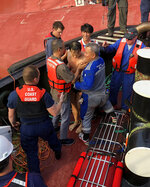 In this image released by the U.S. Coast Guard Monday, Sept. 10, 2019, shows a crew member of the cargo ship Golden Ray as he is helped off the capsized ship off St. Simons Island, Ga. A fire broke out aboard the ship early Sunday, listing it to the side and blocking the shipping channel. The Coast Guard and a salvage crew freed the four remaining Golden Ray crew members. (U.S. Coast Guard via AP)