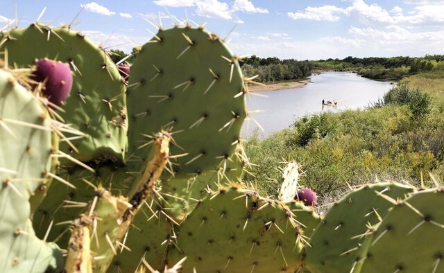 Cactus flanks the banks of the Rio Grande as boaters in the distance navigate the shallow river as it flows through Rio Rancho, New Mexico, on Monday, Aug. 31, 2020. New Mexico and other southwestern states have been dealing with dry conditions and warmer temperatures this summer. (AP Photo/Susan Montoya Bryan)