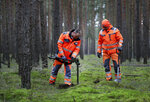 In this Wednesday, Jan. 8, 2020 photo members of a bomb disposal team search for WWII munition in Gruenheide near Berlin, Germany. Tesla CEO Elon Musk said during an awards ceremony in Berlin in November 2019 that 'we have decided to put the Tesla Gigafactory Europe in the Berlin area.' The company will also set up an engineering and design center in Berlin, Musk said. He wrote on Twitter that the new plant 'will build batteries, powertrains & vehicles, starting with Model Y.' (AP Photo/Michael Sohn)
