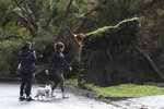 Residents look at a downed tree following storm damage in Lilydale, Melbourne, Australia, Thursday, June 10, 2021. Wild weather has toppled trees which have trapped people in cars and homes in Australia's southeast. More than 200,000 homes have been left without power as many brace for flooding (James Ross/AAP Image via AP)