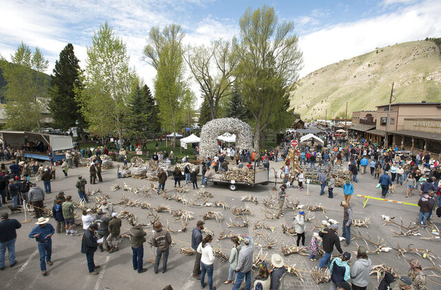 Antler buyers and curious onlookers look over the selection of antlers up for auction and sale during Elkfest, on May 11, 2018, in Jackson, Wyo. Thousands of pounds of antlers gathered from the National Elk Refuge by Boy Scouts and refuge staff are typically sold at the ElkFest antler auction in May. This year they will be sold in a virtual auction after the 2020 event was canceled due to the COVID-19 pandemic. (Bradly J. Boner/Jackson Hole News & Guide via AP)
