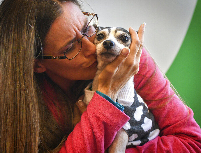 Katheryn Strang is reunited with her toy fox terrier