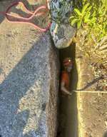 This photo provided by New York State Parks on Wednesday, Oct. 13, 2021, shows parks official Jessica Van Ord entering a fissure to rescue a 12-year-old dog named Liza, found trapped after five days deep inside the narrow, rocky crevice at Minnewaska State Park Preserve in Kerhonkson, N.Y. A dog trapped for five days deep inside a narrow, rocky crevice at a state park north of New York City was rescued unharmed — though it was hungry and thirsty, parks officials said Wednesday.(New York State Parks via AP)
