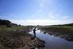 Cristopher Benegas, 12, fishes in what's left of the Payagua stream, a tributary of the Paraguay River, in Chaco I, Paraguay, early Friday, Aug. 27, 2021. Lack of rain in the Paraguay-Brazil pantanal in the north is threatening to break last year's record when the river dropped to historical levels. (AP Photo/Jorge Saenz)