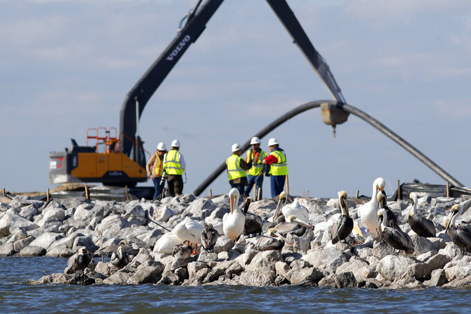 FILE - In this Feb. 3, 2020, file photo, pelicans sit on rocks in front of construction workers on Queen Bess Island in Barataria Bay, La. The island that provides a crucial nesting ground for pelicans and other seabirds is being restored to nearly its former size after decades of coastal erosion and the devastating blow of an offshore oil spill 10 years earlier. (AP Photo/Gerald Herbert, File)