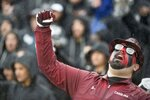 A South Carolina fan cheers on the Gamecocks during the second half of an NCAA college football game against Akron Saturday, Dec. 1, 2018, in Columbia, S.C. South Carolina defeated Akron 28-3. (AP Photo/Sean Rayford)