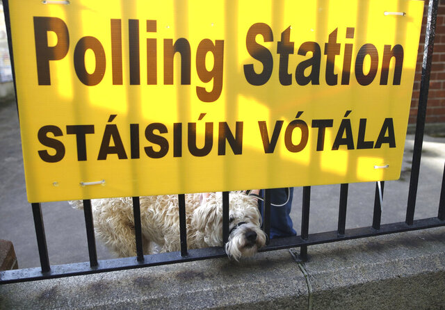 A dog waits for his owner as voting gets under way in the general election in Dublin, Ireland, Saturday, Feb. 8, 2020. Irish voters are choosing their next prime minister in an election where frustration with economic austerity and a housing crisis seem to have have fuelled political uncertainty. (AP Photo/Peter Morrison)