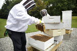 In this Aug. 7, 2019 photo, U.S. Army veterans Vince Ylitalo, left, and Wendi Zimmermann, back, check bees for disease and food supply at the Veterans Affairs' beehives in Manchester, N.H. Veterans Affairs has begun offering beekeeping at a few facilities including in New Hampshire and Michigan, and researchers are starting to study whether the practice has therapeutic benefits. Veterans in programs like the one at the Manchester VA Medical Center insist that beekeeping helps them focus, relax and become more productive. (AP Photo/Elise Amendola)