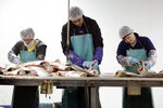 In this Feb. 11, 2020, photo, Asian carp are processed at Two Rivers Fisheries in Wickliffe, Ky. Asian carp were imported to the U.S. in the 1960s and 1970s as an eco-friendly alternative to poisons for ridding southern fish farms and sewage lagoons of algae, weeds and parasites. The advance of the invasive carp, however, threatens to upend aquatic ecosystems, starve out native fish and wipe out endangered mussel and snail populations along the Mississippi River and dozens of tributaries. (AP Photo/Mark Humphrey)