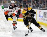 Boston Bruins right wing Chris Wagner (14) controls the puck against Anaheim Ducks defenseman Josh Manson (42) in the second period of an NHL hockey game, Thursday, Dec. 20, 2018, in Boston. (AP Photo/Elise Amendola)