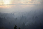 Smoke from a wildfire obscures a stand of trees on the Northern Cheyenne Indian Reservation, Wednesday, Aug. 11, 2021, near Ashland, Mont. In southeastern Montana, communities in and around the Northern Cheyenne Indian Reservation were ordered to evacuate as the Richard Spring Fire grew amid erratic winds.  (AP Photo/Matthew Brown)