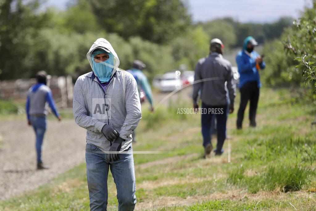 Virus Outbreak Washington Farms