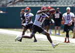 Cincinnati Bengals wide receiver AJ Green (18) catches a pass during an NFL football minicamp Tuesday, June 11, 2019, in Cincinnati. (AP Photo/Gary Landers)