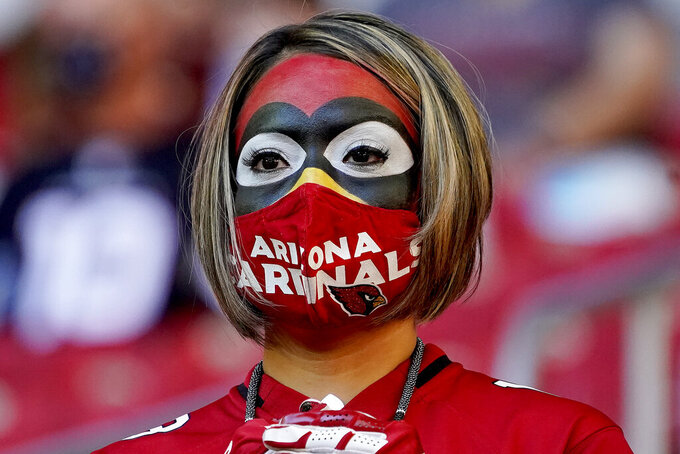 An Arizona Cardinals fan watches during the first half of an NFL football game against the Buffalo Bills, Sunday, Nov. 15, 2020, in Glendale, Ariz. (AP Photo/Rick Scuteri)