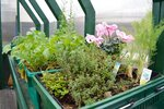A variety of vegetables, herbs and flowers are planted inside Howard Brosius' mobile greenhouse. Brosius, executive director of Chipping Hill Micro Farms, teaches a class on Jan. 14 in Ambler, Pa. (Rachel Ravina/The Reporter via AP)