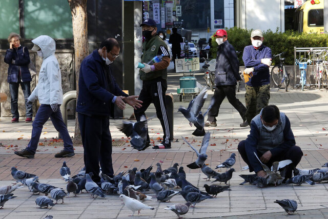 People wearing face masks to help protect against the spread of the coronavirus feed pigeons on a street in Goyang, South Korea, Wednesday, Nov. 11, 2020. (AP Photo/Ahn Young-joon)