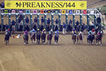 FILE - In this May 18, 2019, file photo, jockey John Velazquez tumbles to the track after falling off Bodexpress (9) as the field breaks from the starting gate in the 144th Preakness Stakes horse race at Pimlico race course in Baltimore. War of Will, far right, ridden Tyler Gaffalione won the race. A person with knowledge of negotiations tells The Associated Press the Maryland Jockey Club and NBC Sports have set aside three possible dates for the running of the next Preakness. (AP Photo/Nick Wass, File)