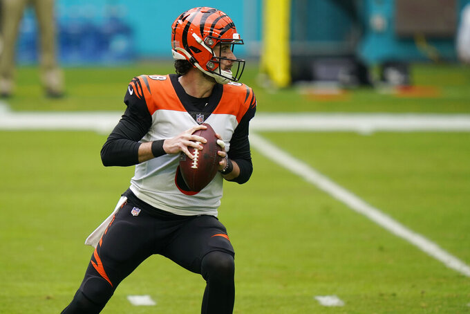 Cincinnati Bengals quarterback Brandon Allen (8) looks to pass the football during the first half of an NFL football game against the Miami Dolphins, Sunday, Dec. 6, 2020, in Miami Gardens, Fla. (AP Photo/Lynne Sladky)