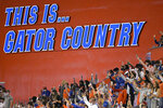 FILE - In this Nov. 14, 2020, file photo, Florida fans watch from the stands during the second half of an NCAA college football game against Arkansas in Gainesville, Fla. Florida's athletic department had a $54.5 million shortfall during the 2020-21 fiscal year because of the coronavirus pandemic, significant financial losses the Gators were able to weather with a supplement from the Southeastern Conference and a sizeable reserve. (AP Photo/Phelan M. Ebenhack, File)