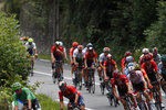 Slovakia's Peter Sagan wearing the best sprinter's green jersey, bottom left, and Belgium's Tim Wellens wearing the best climber's dotted jersey, ride with the pack during the twelfth stage of the Tour de France cycling race over 209,5 kilometers (130 miles) with start in Toulouse and finish in Bagneres-de-Bigorre, France, Thursday, July 18, 2019. (AP Photo/ Christophe Ena)