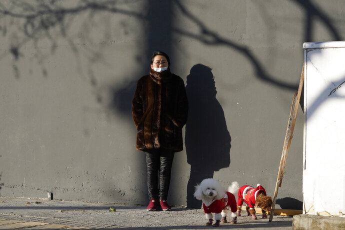 A woman wearing mask to help protect herself from the coronavirus stands in the sun as she walks her dogs in Beijing on Friday, Jan. 8, 2021. With next month's Lunar New Year travel rush looming, the government is telling people to stay put as much as possible and not travel to or from the capital Beijing. (AP Photo/Ng Han Guan)