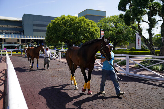 In this Friday, May 22, 2020 photo, grooms wearing face masks lead horses to the paddock at Santa Anita Park in Arcadia, Calif. Horse racing returned to the track after being idled for one and a half months because of public health officials' concerns about the coronavirus pandemic. (AP Photo/Ashley Landis)