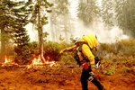 Cal Fire Battalion Chief Craig Newell carries a hose while battling the North Complex Fire in Plumas National Forest, Calif., on Monday, Sept. 14, 2020.  Firefighters trying to contain the massive wildfires in Oregon, California and Washington state are constantly on the verge of exhaustion as they try to save suburban houses, including some in their own neighborhoods. (AP Photo/Noah Berger)